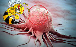 Продукты пчеловодства при онкологии