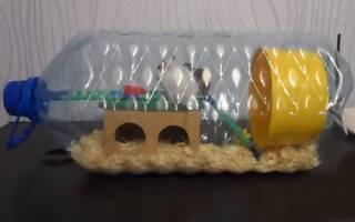 Как сделать хомяку домик