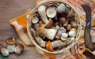 Сколько хранить маринованные грибы