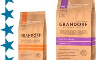 Грандорф для собак состав
