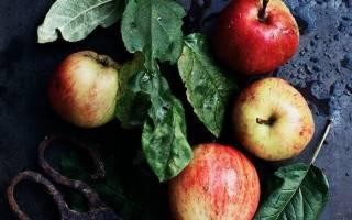 Из яблок без сахара