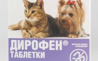 Дирофен для кошек инструкция