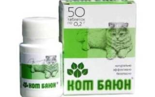 Как давать кот баюн