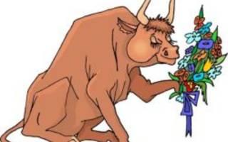 Почему корова не гуляет