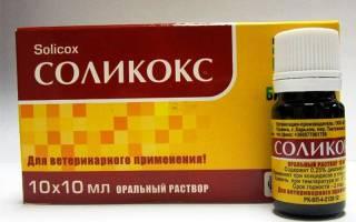 Соликокс инструкция по применению