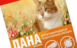 Капли дана для кошек