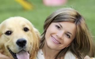 Повадки собак и их значение