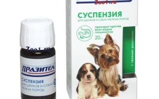 Празител для собак суспензия