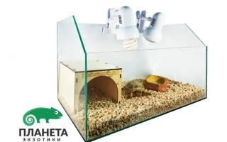 Клетка для черепахи сухопутной