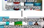 Амоксоил ретард инструкция