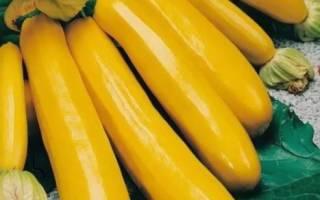 Если кабачок желтый