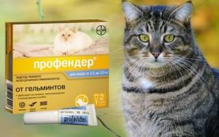 Профендер инструкция для кошек