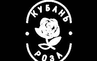 Роза жасмина плетистая
