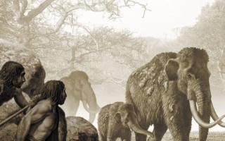 Как охотились древние люди