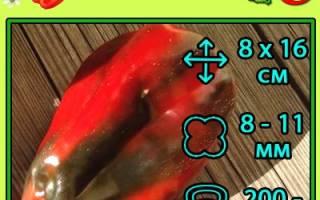 Перец сладкий клаудио