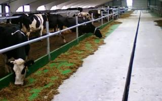 Лечение ацидоза у коров
