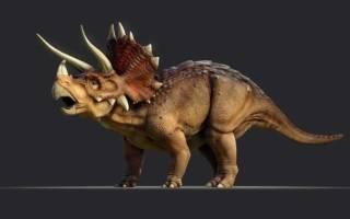 Динозавр с воротником