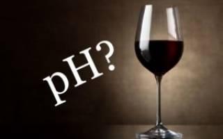 Домашнее вино кислит