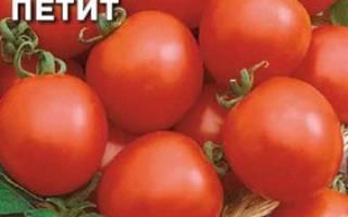 Флорида петит томат