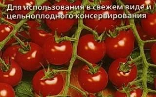 Томаты красная гроздь