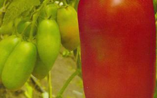 Гроздевые сорта томатов