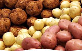 Картошка для посадки