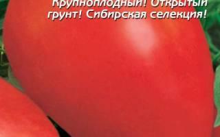 Канопус томат отзывы