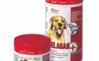 Гелакан для собак инструкция