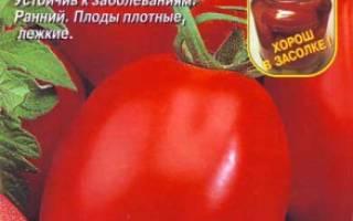 Засолочное чудо томат отзывы