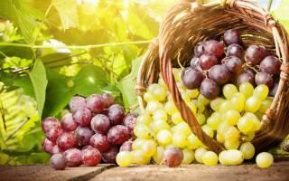 Варенье из домашнего винограда