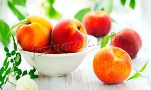 Все сорта персика