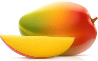 Вырастить манго из косточки