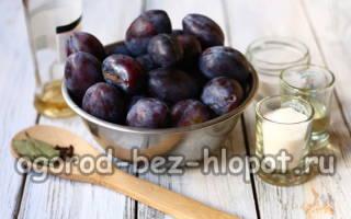 Маринованные сливы как маслины