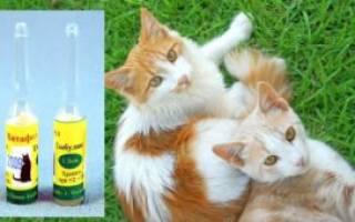 Витафел с для кошек